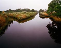 canal in fog, near highway 17 by Eliot Dudik
