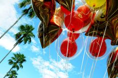 Disney Hollywood Studios Balloons