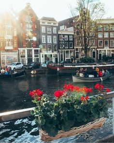 ♕pinterest/amymckeown5 Amsterdam Bridge, Amsterdam Canals, Amsterdam Netherlands, Us Travel, I Want To Travel, Travel Goals, Travel Bugs, Places To Travel, Travel Destinations