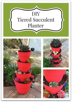 diy succulent tiered planter gardening how to, container gardening, crafts, gardening, how to, succulents