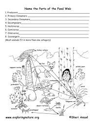 Bildergebnis für food web worksheet to colour in and cut out