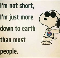 Funny Sayings About Family Hilarious 23 Ideas – Jokes Peanuts Quotes, Snoopy Quotes, Phrase Cute, Charlie Brown Quotes, Short People Problems, Short People Jokes, Good Comebacks, Funny Quotes, Funny Memes