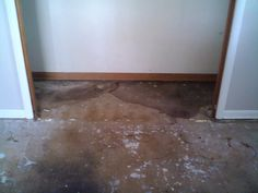front bedrm closet. 10 feet long, all rotted thru cuz bathrm on other side of this wall.... soooooo gross smelling too.