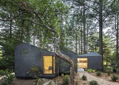 Tranquil Eco-Resort Springs up Between the Trees in Portugal's Parque de Pedras Salgadas | Inhabitat - Sustainable Design Innovation, Eco Architecture, Green Building