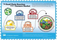 Farmers markets have become a critical ingredient in local economies, food systems & communities. Not only are they an economic boost to local farms & businesses, they can also strengthen community ties & promote healthy eating. Food Policy, Farm Business, Usda Food, Food System, Healthy Eating Recipes, Organic Recipes, Farmers Market, Natural Health, Marketing