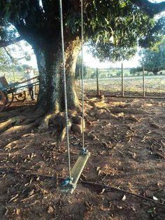 E você provavelmente já brincou num balanço de árvore como este.