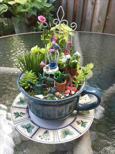 Miniature fairy gardens 310748443043351357 - Favourite Indoor Fairy Garden Ideas Source by marlisgrandi Indoor Fairy Gardens, Mini Fairy Garden, Fairy Garden Houses, Gnome Garden, Miniature Fairy Gardens, Miniature Fairies, Fairies Garden, Water Gardens, Small Gardens