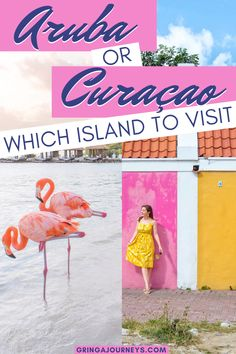 Choosing between Aruba and Curaçao is really difficult especially because both destinations are worth a visit. Here's my take on Aruba vs Curaçao. Travel Guides, Travel Tips, Travel Packing, Amazing Destinations, Travel Destinations, Cruise Tips, Romantic Vacations, Romantic Getaways, Romantic Travel