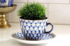 Perfect for your desk or windowsill and absolutely adorable!