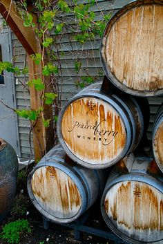 Prairie Berry Winery...South Dakota 25 minutes from rapid city @Visit Rapid City