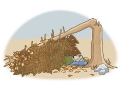 How to build a survival shelter – Boys' Life magazine