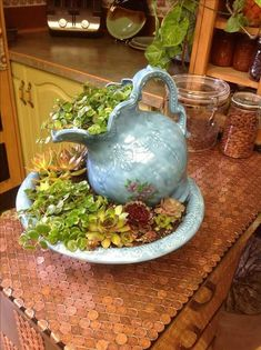 Easy Diy Garden Projects You'll Love Succulent Gardening, Succulent Pots, Cacti And Succulents, Planting Succulents, Container Gardening, Planting Flowers, Succulent Ideas, Organic Gardening, Kitchen Gardening