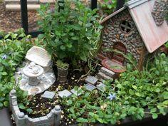 Stone Cottage 3 Mini Garden