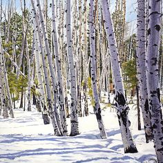 Landscape Painting Winter Aspens 11 X 14 Giclée by dfishbac Watercolor Landscape, Landscape Paintings, Watercolor Paintings, Landscapes, Watercolor Ideas, Acrylic Paintings, Watercolors, Watercolor Painting Techniques, Painting Prints