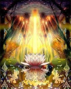 Just like many of us the lotus flower has to battle to rise above obstacles and bloom. Just like the beautiful lotus we can strive to blossom & reach our full potential Third Eye, Masaru Emoto, Spiritual Images, Mystique, Visionary Art, Spiritual Inspiration, Love And Light, Sacred Geometry, Awakening
