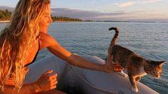 Una donna e la sua gatta navigano in giro per il mondo Guarda le foto