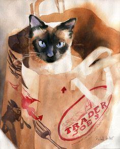 lmsgfbn:   Bagged Rachel Parker