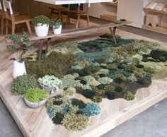 1000 images about landscaped play mats on pinterest carpets