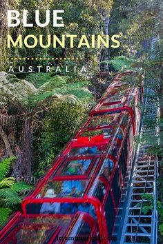 Australia travel: The Blue Mountains are located only by train from Sydney, Australia. It's the only place I've been that it's both a National Park and an amusement park: there is a skyway, a cable car and a railway that are attractions by themselves. Brisbane, Papua Nova Guiné, Places To Travel, Travel Destinations, Blue Mountains Australia, Visit Australia, Australia Trip, Sydney Australia Travel, Cairns Australia
