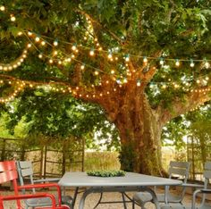 Guirlande lumineuse guinguette colorée  leds 8m Blachere
