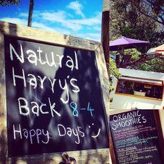Natural Harry's Back  @natural_harry  Sat  Sun 8-4 #organic #superfoods #raw #smoothies #treats #naturalharry  #aguideto #aguidetobarwonheads #smallbusiness #shoplocal #livelovelocal #instagood #photography #ocean #beach #surf #fun #amazing #art  #barwonheads #oceangrove #bellarine #bellarinepeninsula #gtown #geelong #visitvictoria #tourismgeelong #australia #seeaustralia by a_guide_to_barwonheads http://ift.tt/1JO3Y6G