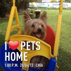 En Columbio en Pets Home