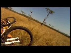 Cyclyist gets hit by an Antelope.This isn't necessarily cool, more shocking than anything else.
