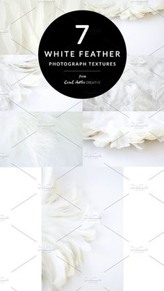 White Feather Texture Pack by Coral Antler Creative on @creativemarket