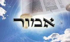 "Rabbi David Etengoff: Parashat Emor ""How to Become A Kingdom of Priests"" Leadership Activities, Leadership Roles, Rabbi, Torah, Educational Technology, How To Become, David, Blog"