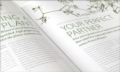 brochure design : Proven Winners Europe