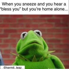 "16 Sassy 'Kermit The Frog' Memes We Definitely Didn't Find On 'The Muppets' - Funny memes that ""GET IT"" and want you to too. Get the latest funniest memes and keep up what is going on in the meme-o-sphere. Kermit Face, Kermit The Frog Meme, Funny Kermit Memes, Funny Relatable Memes, Muppet Meme, Silly Faces, Meme Faces, Kermit Der Frosch Meme, Stupid Memes"