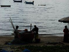 domorodci -Thaja Fish, Sports, Hs Sports, Pisces, Sport