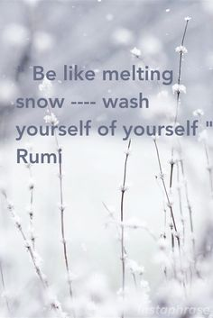 "SELF: ★ ""BE like melting snow . . . . wash yourself of yourself."" ~ Rumi"