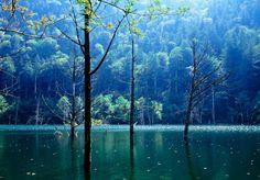 scenic blue