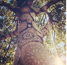 Mandalas on a tree