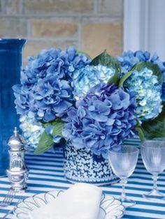 blue hydrangeas on blue stripe cloth.