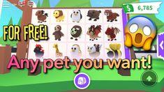 Roblox Guy, Play Roblox, Elf Pets, Spongebob Birthday Party, Roblox Gifts, Fandom Games, Pet Dragon, Roblox Pictures, Disney Jokes