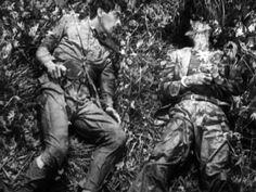 Captured (Stray Dog, Akira Kurosawa, 1949)