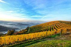 Vacanze estive: 5 destinazioni per gli amanti del vino