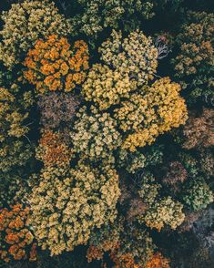 """wistfullycountry: """" Tobias 