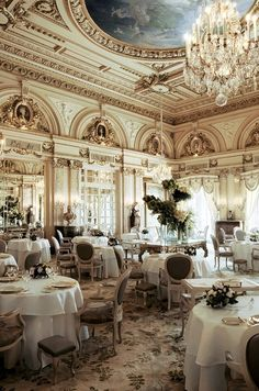 Ana Rosa - reminds me of the LS Ayres tea room Mother would take me to when we went shopping downtown as a little girl ...b