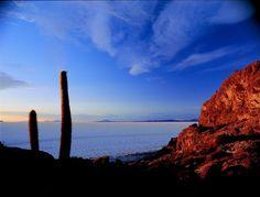 Isla Pescado,Bolivia