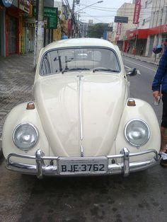 Beatle in Sao Bernardo do Campo Cool Cars, Vehicles, St Bernards, Places, Beetle, Car, Vehicle, Tools