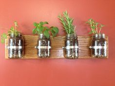 Use mason jars and hose clamps to make a beautiful herb garden!