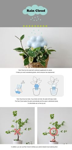 Rain Water Cloud   Passive Plant Watering System   Via Connect Design   $21