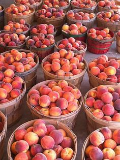 The Palisade Peach Festival is an event organized by the Palisade Chamber of Commerce. Celebrate the Western Slope's peach harvest! The Peach Festival offers four days of fun-filled, entertaining events with more than 100 food, art and craft vendors, great live musical entertainment, a fantastic children's area, various culinary activities, numerous special events, and of course, world famous Palisade Peaches! There is something for everyone!
