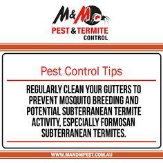 Control Inspections Ventilation,Termite Eradication Termite Control