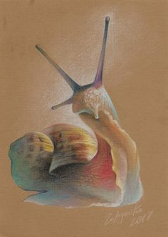Улитка Ахатина | 30x20 см. бумага-мягкий материал 2017 | Художник Евгений Гордейко