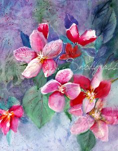 Floral Watercolor Apple Blossom Painting for beautiful Custom Greeting Cards with Pink, violet and green colors by CalArtist, $5.00