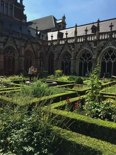 Hidden maze in a church in Utrecht